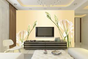 墙纸、壁布背景墙的清洁与保养